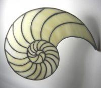 """Nautilus 9"""" x 7"""""""
