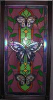 staind glass butterfly window